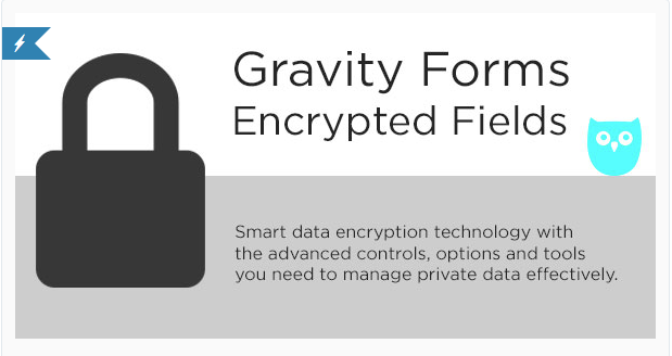 Gravity Forms Encrypted Fields plugin